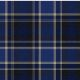 (A) Design Your Own Exclusive Tartan Heritage Museum